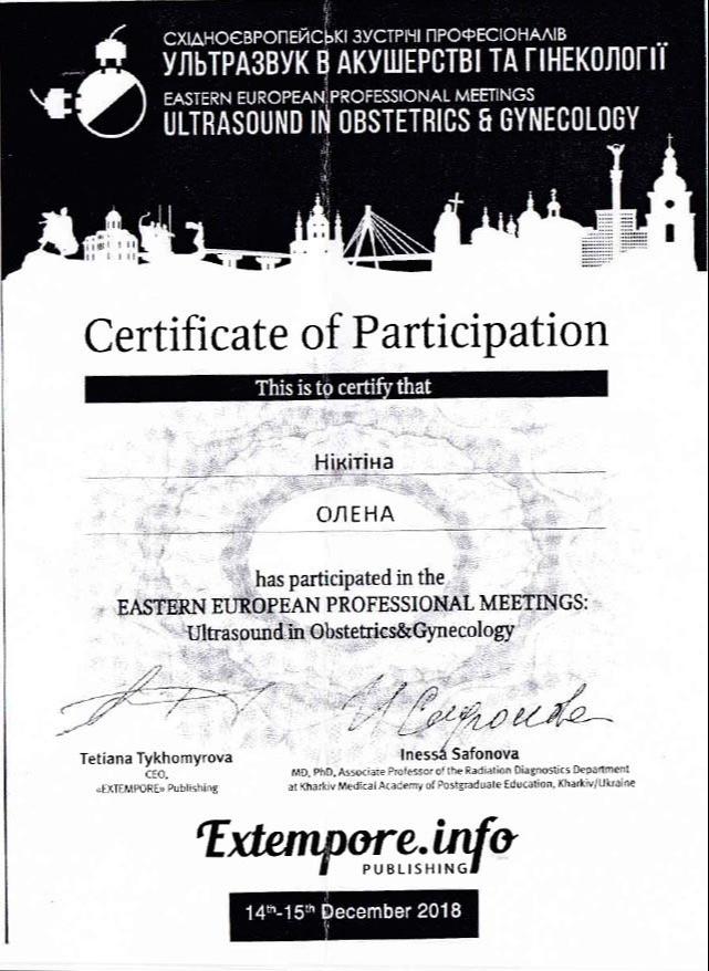 Сертификат об участии в восточно-европейской профессиональной встрече